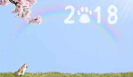 【新年のスタートにお墓参りのススメ】元旦は縁起が悪いの?