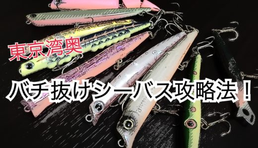 【東京湾奥バチ抜けシーバス攻略法】バチパターンの釣り方とおすすめルアー※2019年最新版