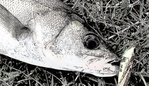 【幻の中川シーバスを求めて…】絶滅した中川シーバスを探して彷徨った朝マズメ釣行記