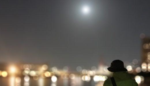 【連夜のくだらない実験釣行】クルクルバチパターンのセイゴを必死で釣る!