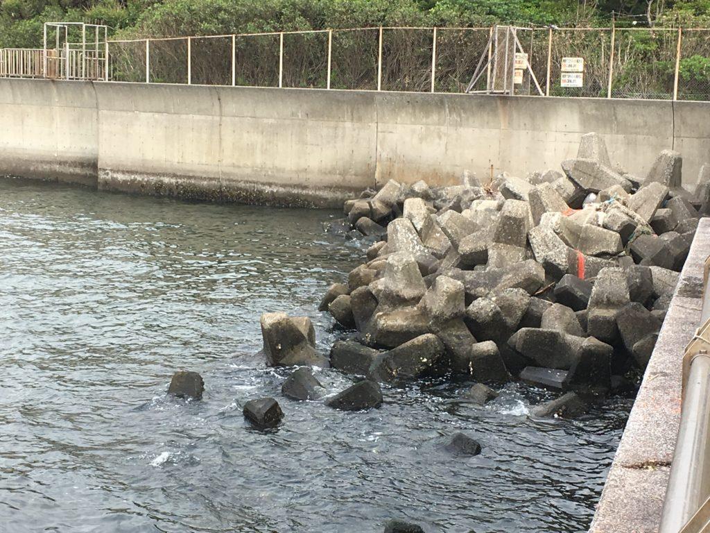釣果 公園 東扇島 西