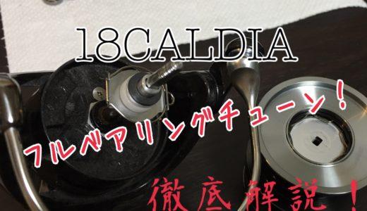 【実践!18カルディアをフルベアリング化】ヘッジホッグスタジオMAX11BBキットでLT5000D-CXHの交換手順を解説