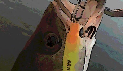 【セイゴ釣るのに必死!】深夜の荒川下流域シーバス釣行
