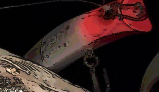 【荒川爆釣!?】Megabassカゲロウ100Fのポテンシャルを実感させられたシーバス釣行記