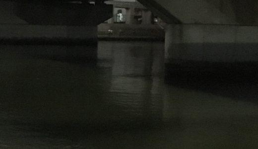 【中川下流域シーバス釣行】橋脚ヨレのシューティングゲームに悶絶!