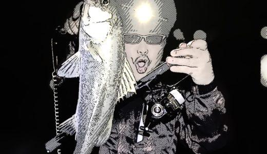 【爆釣!?秋の中川明暗地蔵】Musician's釣り部の14時間耐久シーバス釣行