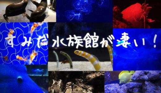 【すみだ水族館が凄い!】趣向を凝らした大人の癒やしの空間を徹底紹介!