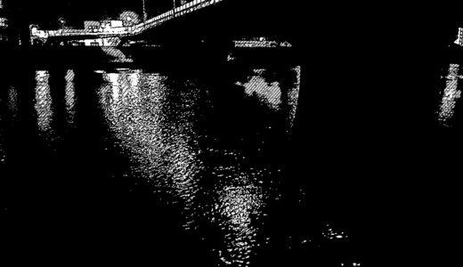 【久しぶりの湾奥】すっかり真冬の中川下流域深夜シーバス釣行