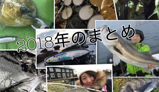 【2018年のまとめ】祝!釣リズム一周年と想い出の釣行を振り返る