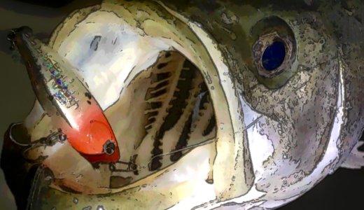 【深夜の荒川シーバス釣行】緩い流れにサスペンドルアーな件